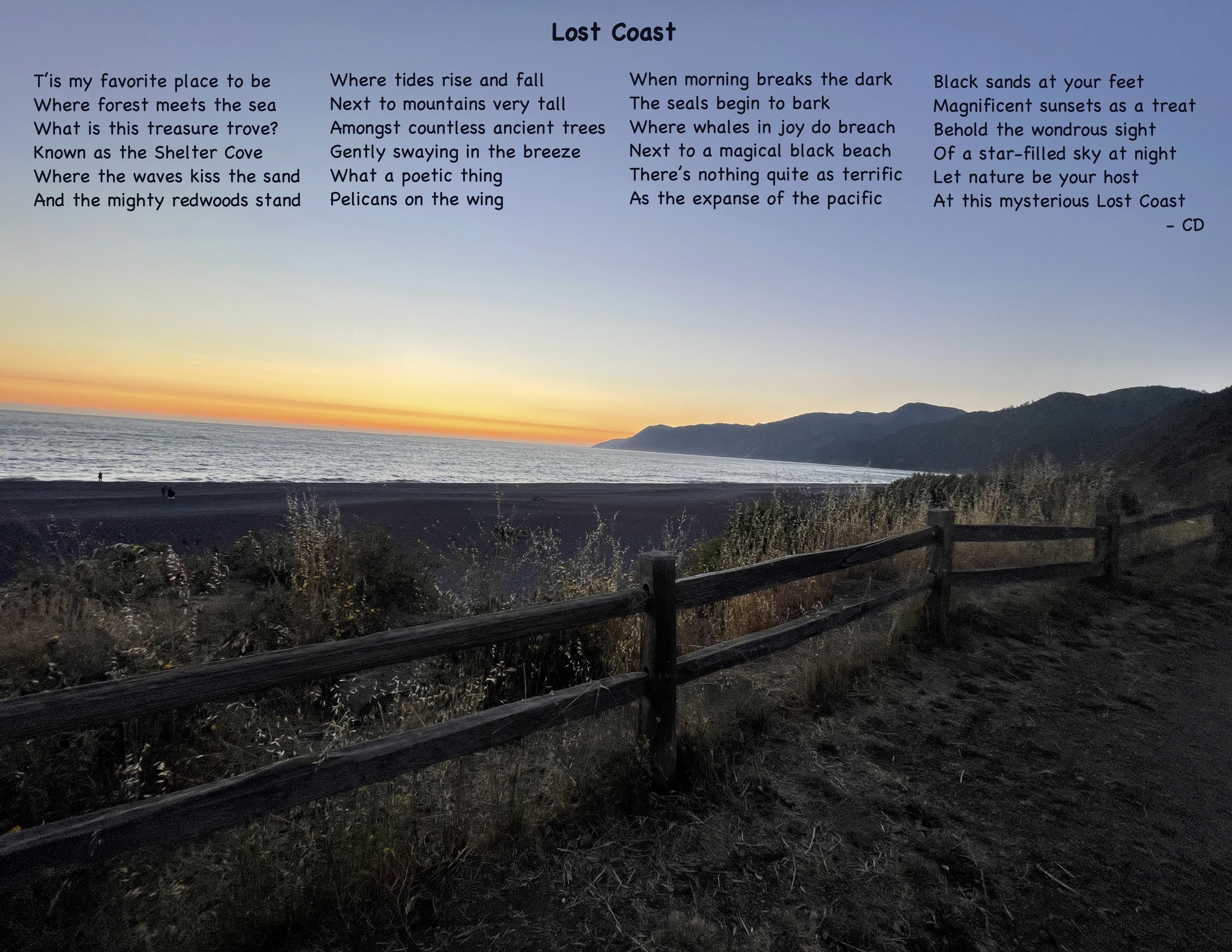 Lost Coast - Where Forest meets ocean